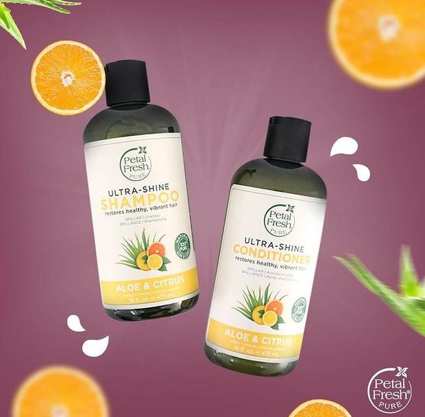 Petal Fresh Pure Aloe & Citrus Conditioner