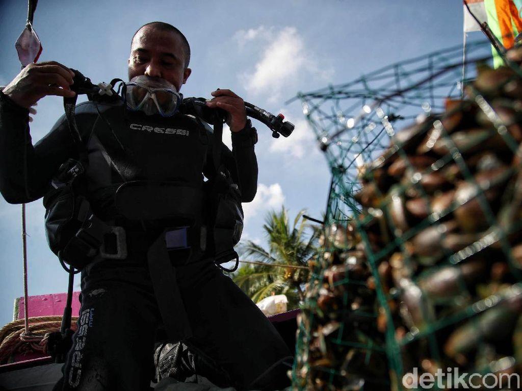 Restorasi Kerang Hijau untuk Jernihkan Laut Jakarta