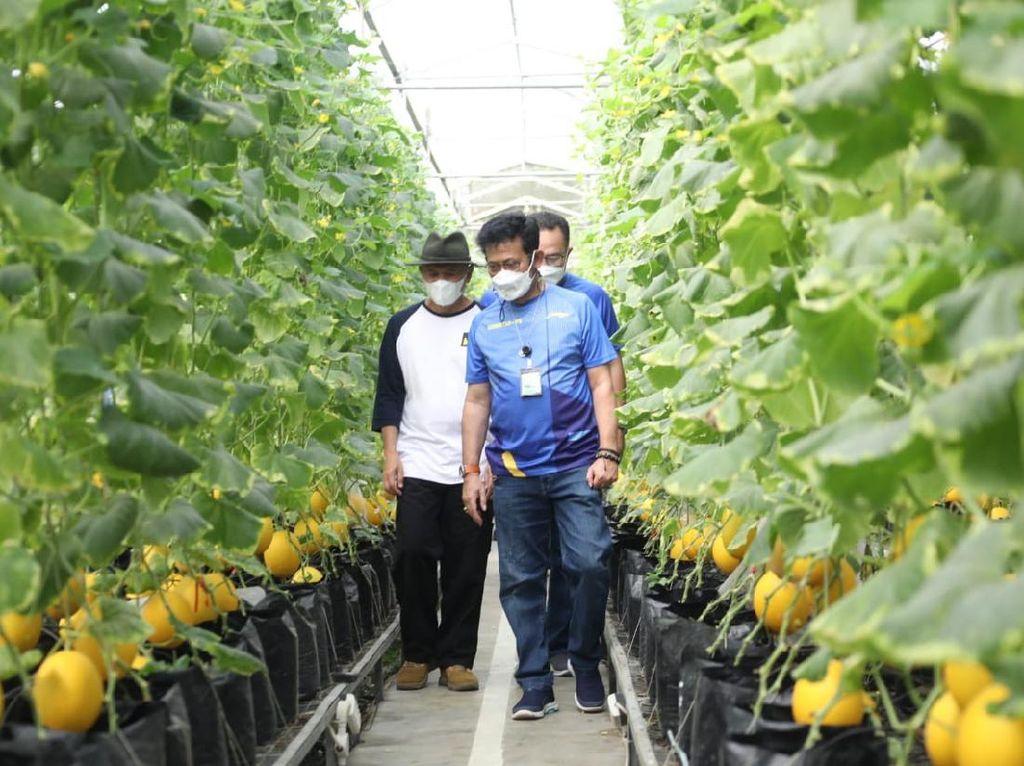 Kementan & Kemenkop Gandeng IPB Wujudkan Korporatisasi Sektor Pertanian