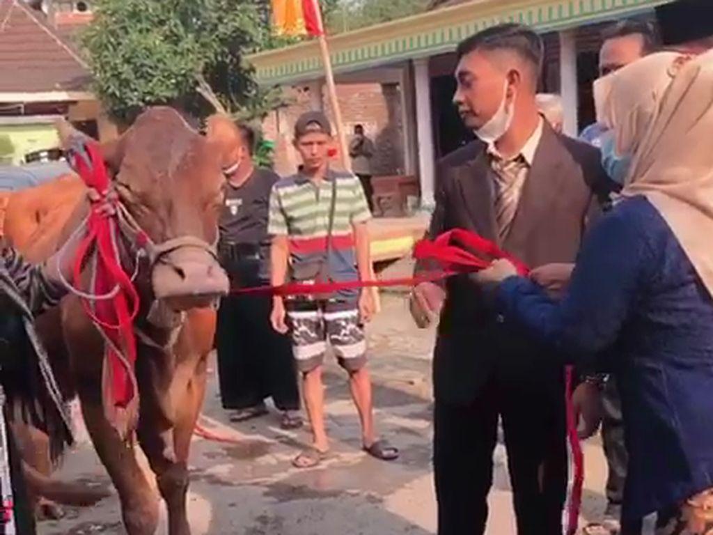 Viral Seserahan Pernikahan Sultan Nganjuk, Habis Berapa Duit?