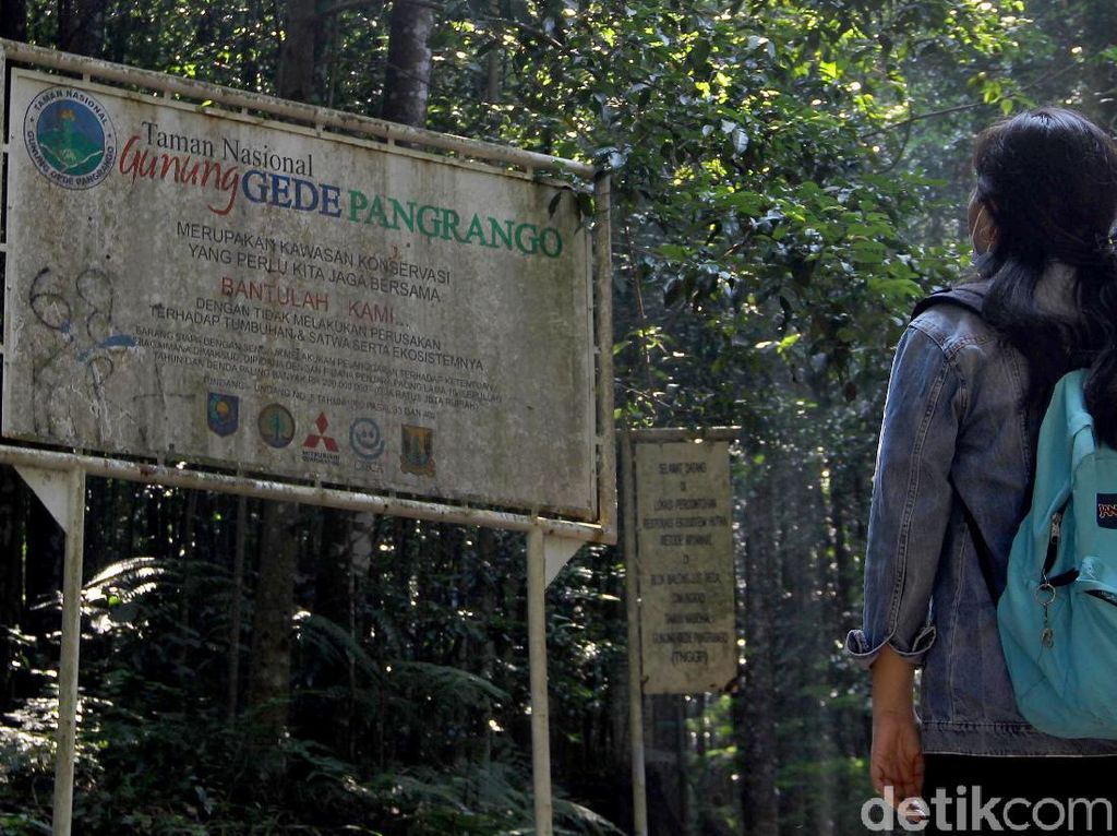 Mengunjungi Pusat Konservasi Elang Jawa di Cimungkad Sukabumi