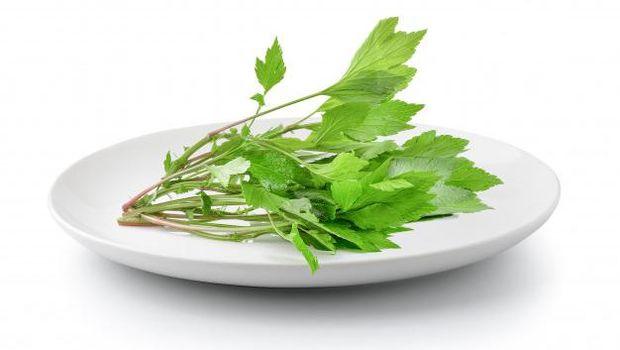 Mugwort sebagai bahan skincare alami yang membantu atasi kulit kusam dan inflamasi.