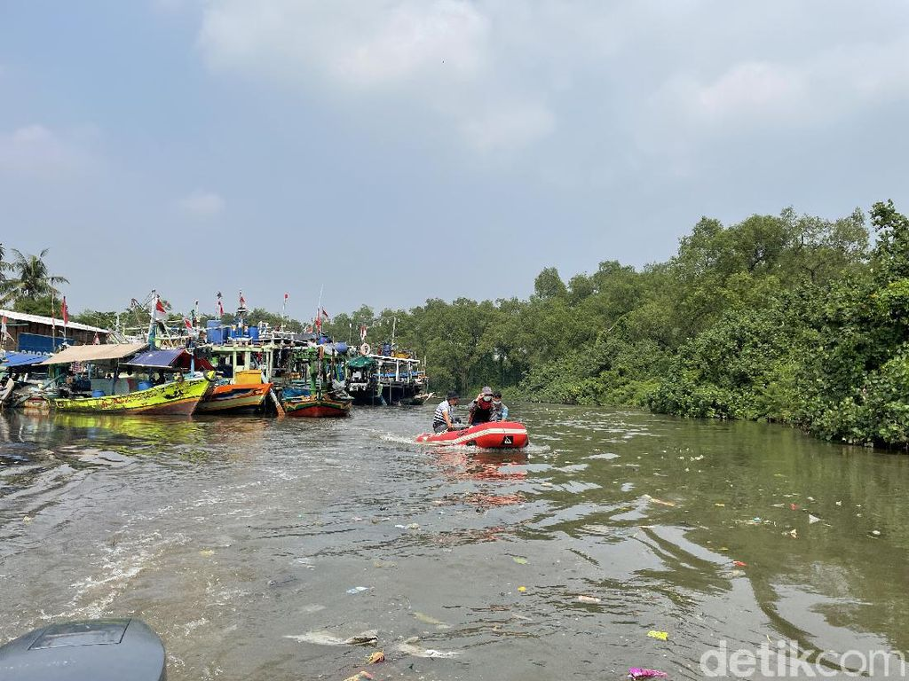 Banjir dan Permukiman Liar Bayang-bayangi Suaka Margasatwa Muara Angke