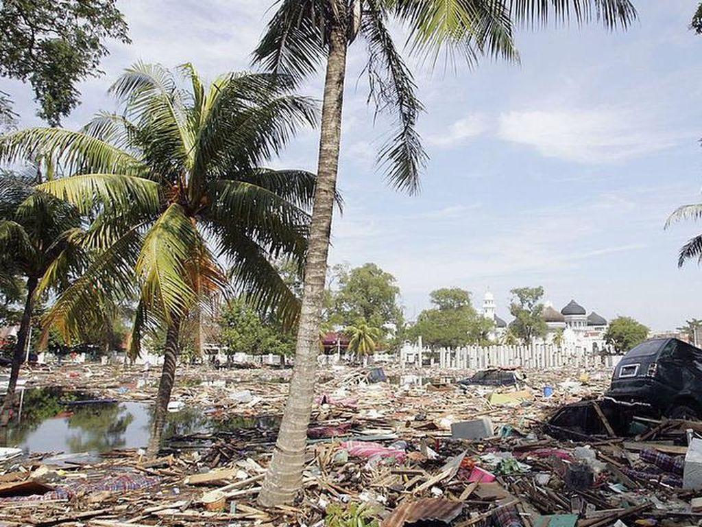 Gempa Bumi Terlama Pernah Melanda Sumatra, Berlangsung 32 Tahun