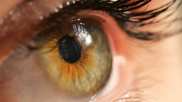Details of Human Eye Macro View with Natural Light