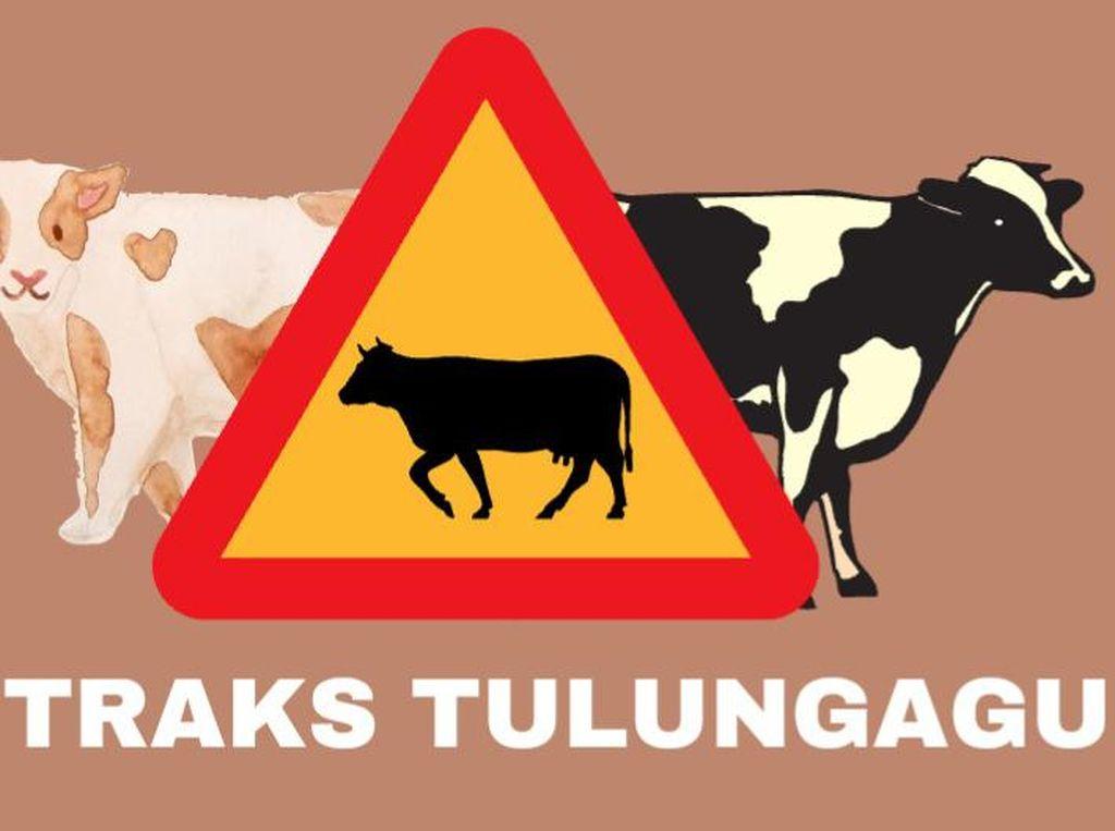 Ada Kasus Antraks di Tulungagung, Sapi Satu Desa Di-lockdown