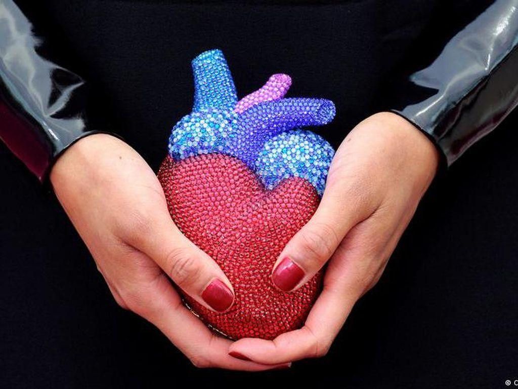 Jantung Perempuan Lebih Rentan Dibanding Jantung Pria