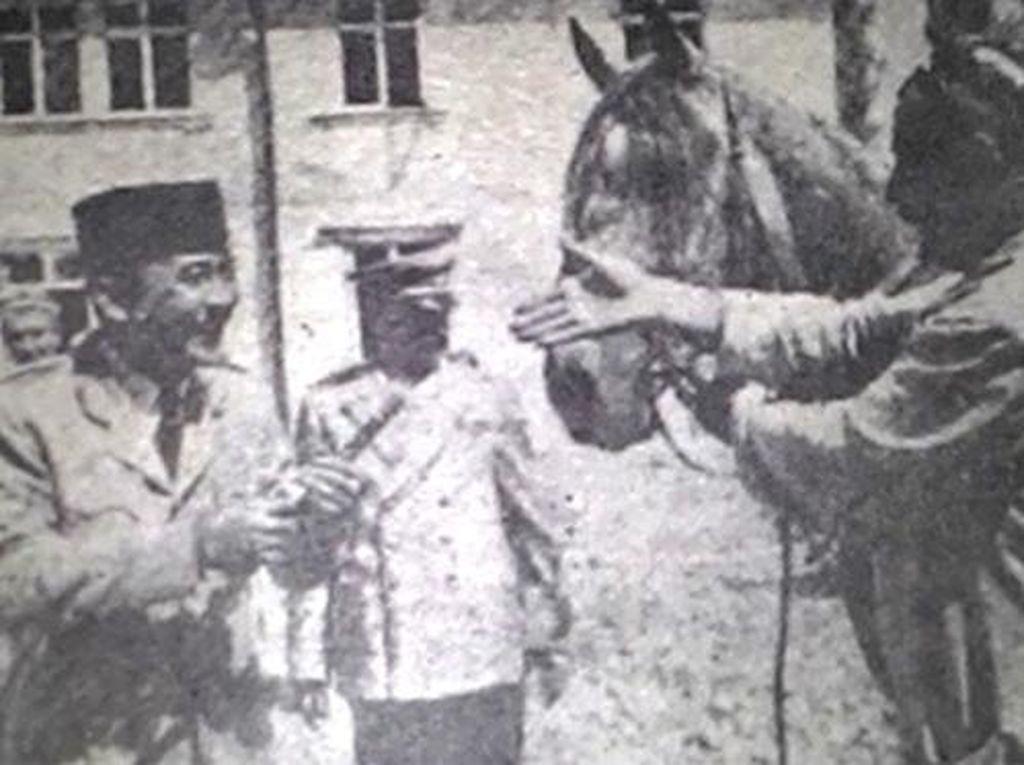Kuda dan Tiga Presiden Kita