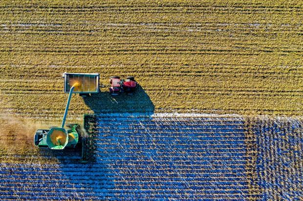 Ilustrasi panen pada pertanian skala besar