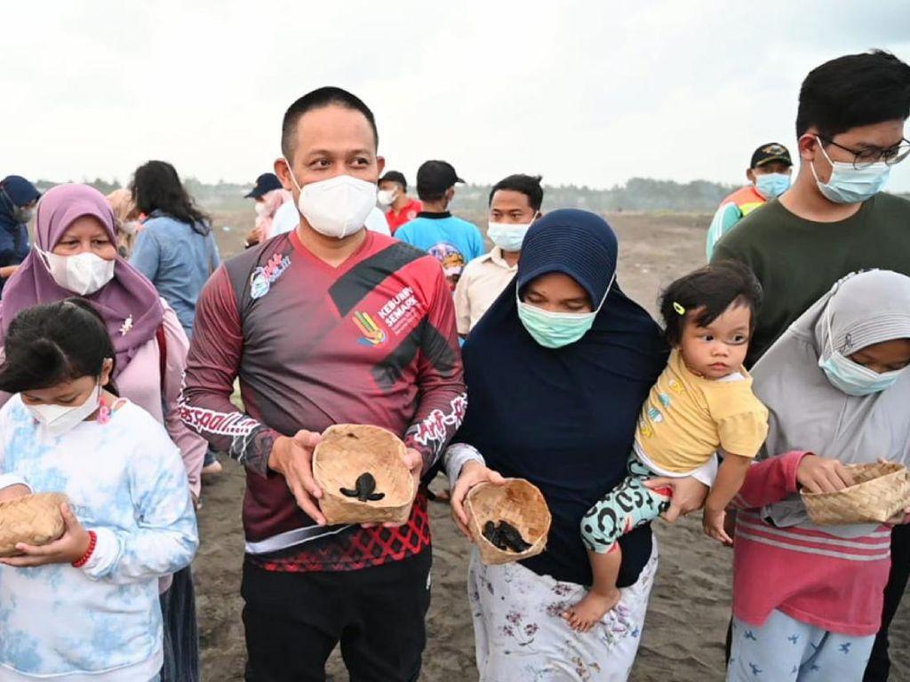 Jaga Kelestarian Alam, Bupati Kebumen Lepas Puluhan Tukik di Pantai