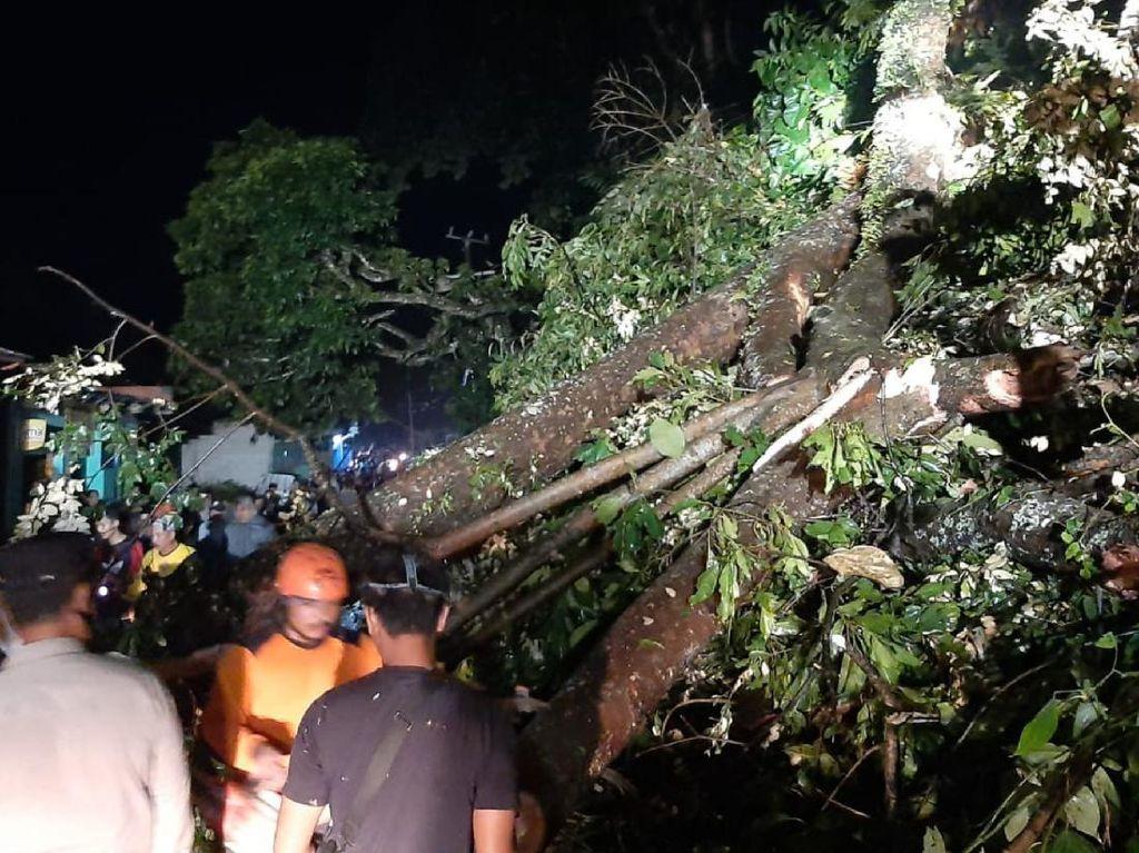 Pohon Tumbang Timpa Rumah-Melintang di Jalan Cikakak Sukabumi