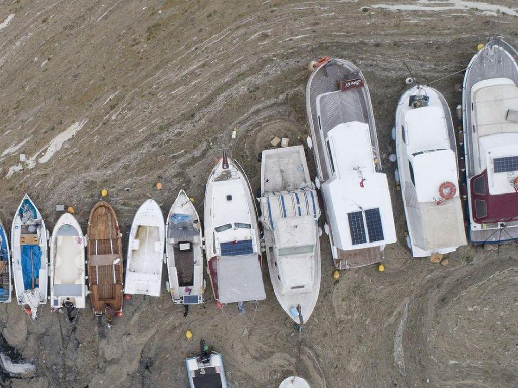Penampakan Wabah Ingus Laut Ancam Ekosistem Laut Turki