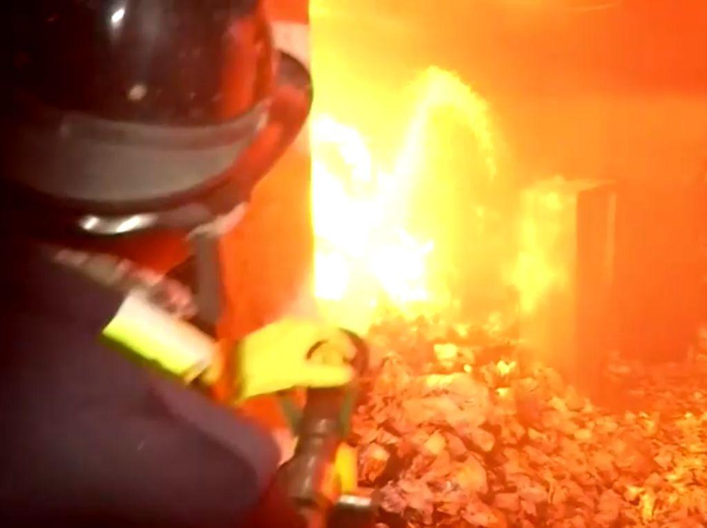 Kebakaran Landa Pabrik Produksi Hand Sanitizer di India, 18 Orang Tewas