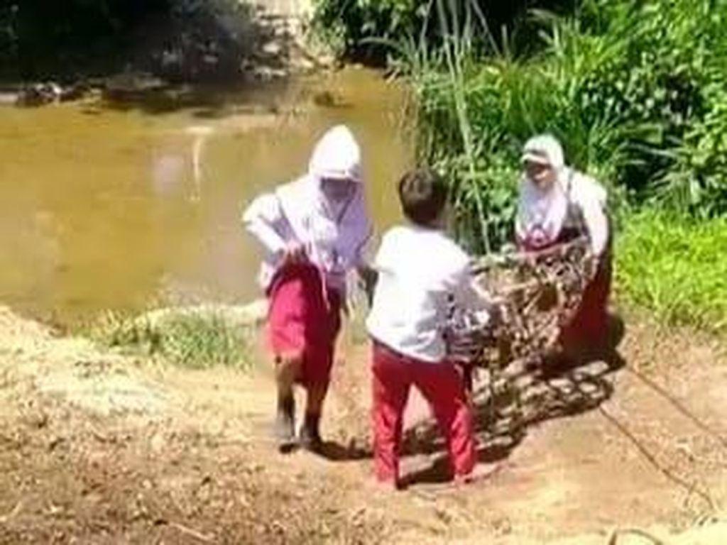 Kisah Miris 3 Siswa SD Bergelantungan Seberangi Sungai demi ke Sekolah