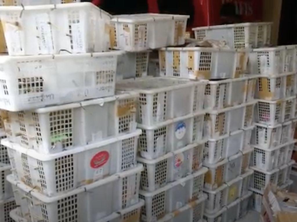 Polisi Amankan 2.083 Ekor Burung Selundupan di Pelabuhan Merak