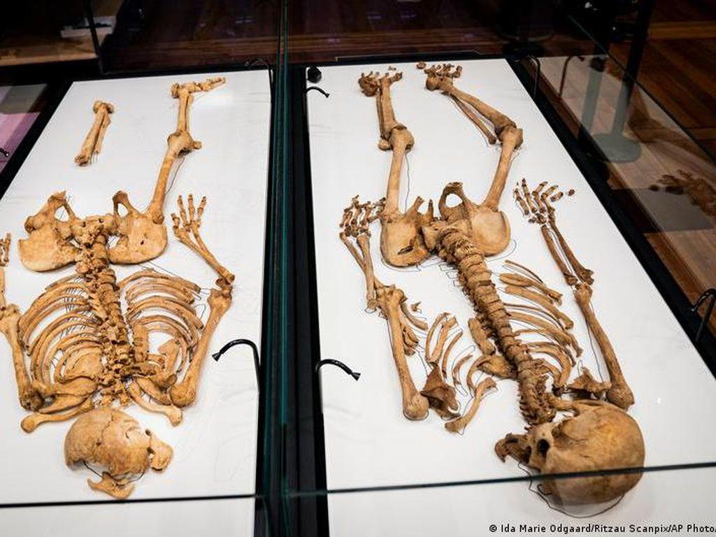 Tes DNA Ungkap Hubungan Keluarga 2 Kerangka Viking di Denmark dan Inggris