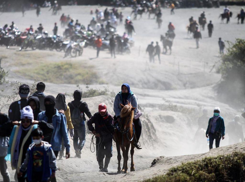 Jasa Penyewaan Kuda untuk Menuju Puncak Bromo