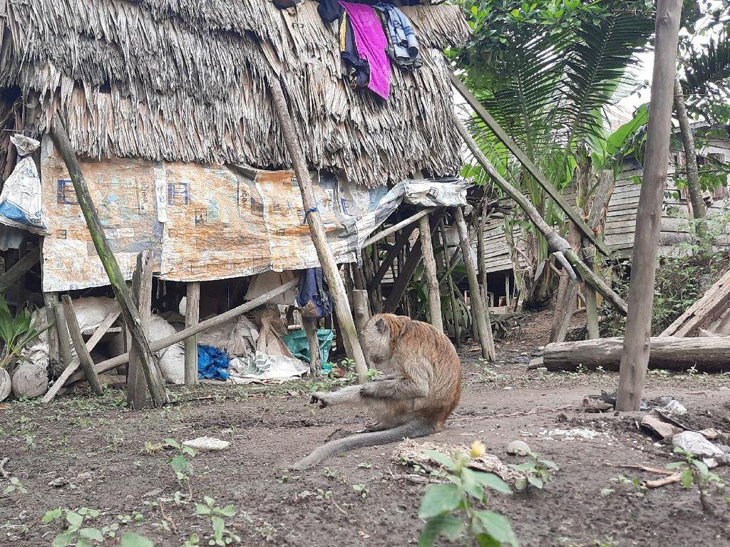 Pemkab Ogan Ilir Janji Bikinkan Rumah untuk Lansia Tinggal di Kandang Ayam