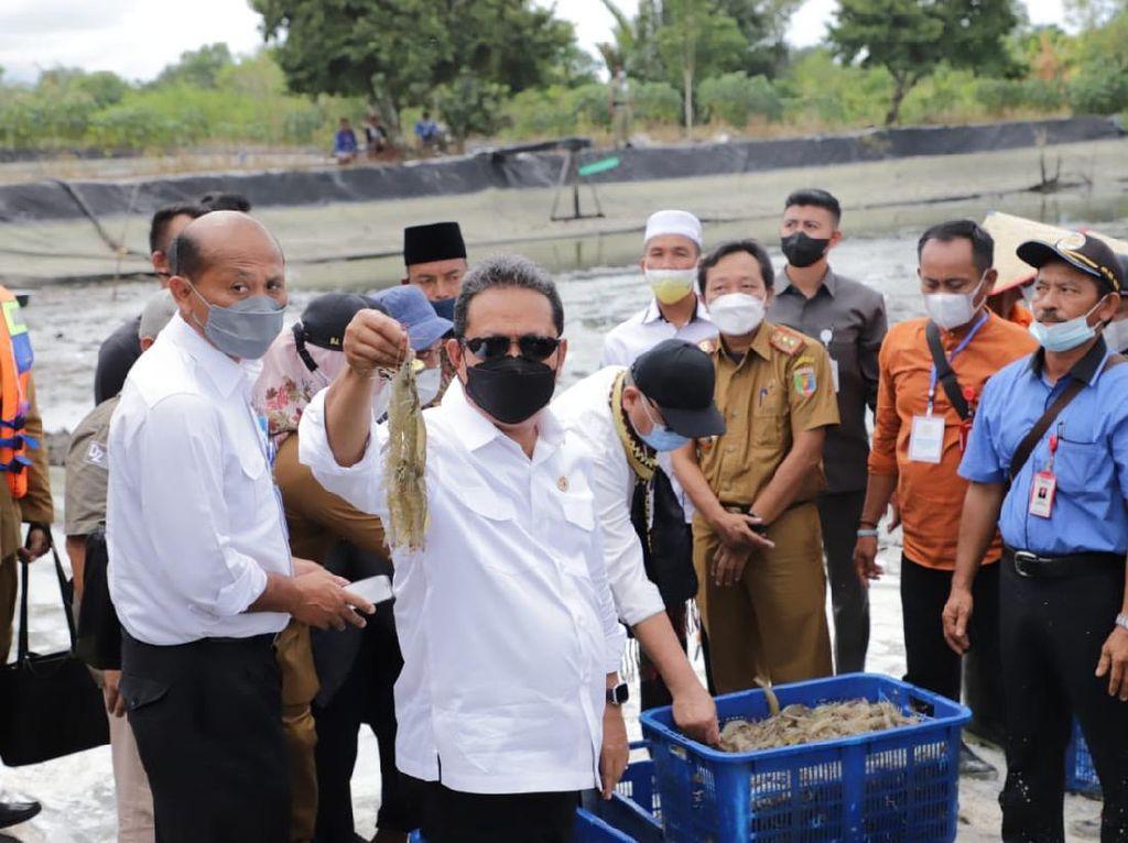 Menteri KKP Usulkan Revitalisasi Tambak Udang Bumi Dipasena Lampung