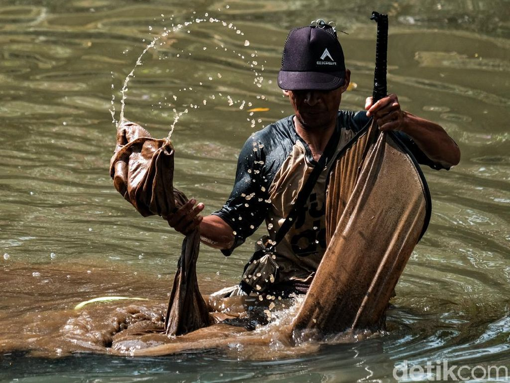 Semangat Para Pencari Cacing di Kali Bintaro