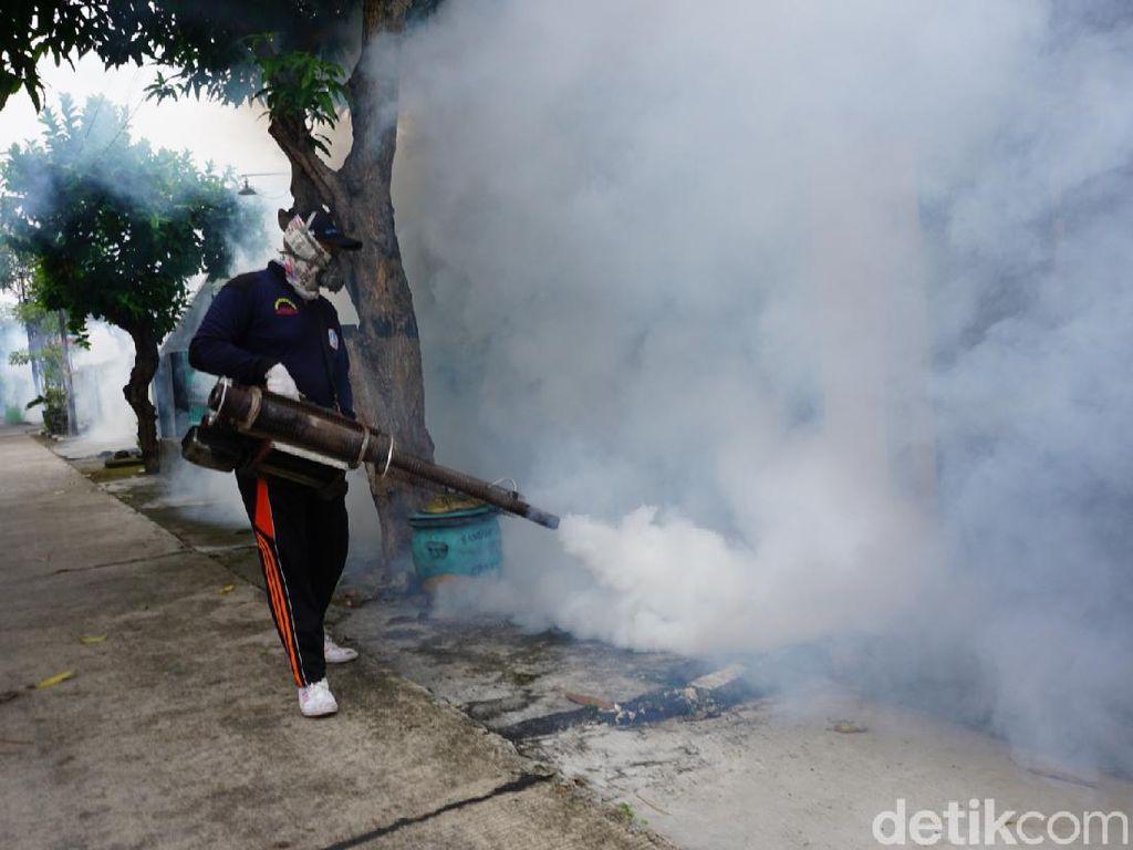 Chikungunya Mewabah di Mojokerto, 1.282 Orang Terjangkit Sejak Awal Tahun
