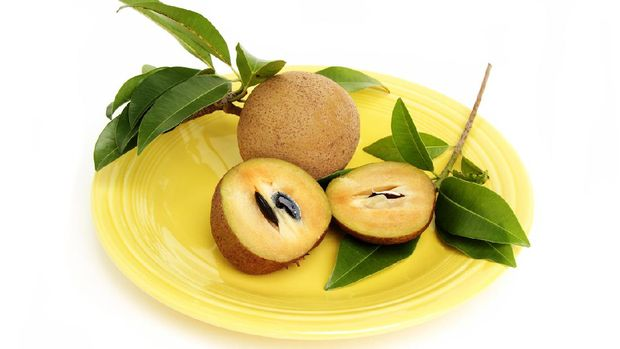 Sapodilla, Manikara Zapota,  is a popular fruit in Mexico, South America, the Caribbean, and Middle Eastern countries like India and Pakistan. Also known as sapota, zapota, and chikoo. This image shows a sliced fuit in foreground with seeds in one side. A  whole, uncut fruit is in the background, The fruit is on a yellow platter and surrounded by several sapodilla tree leaves. Fruit is very sweet when ripe and has a malty, caramel flavor.