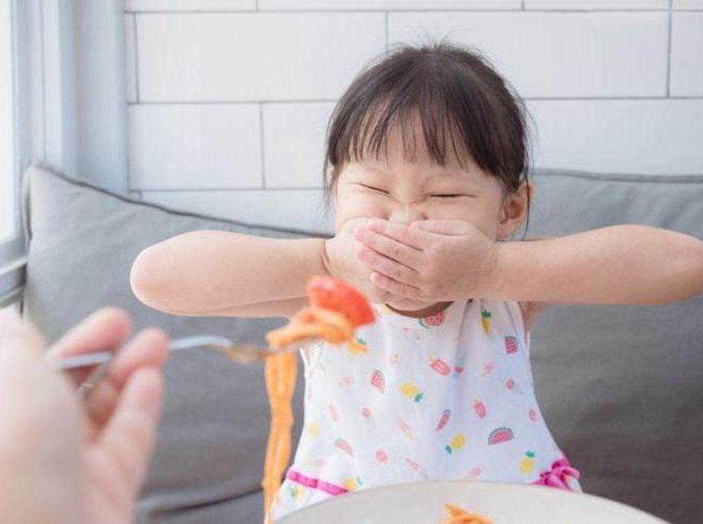Anak Susah Makan tapi Suka Ngemil? Coba Tips & Trik Ini!