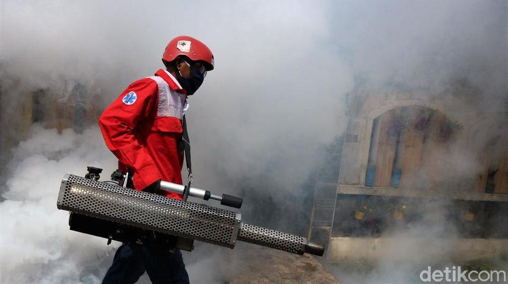Melihat Pencegahan Demam Berdarah di Kala Pandemi