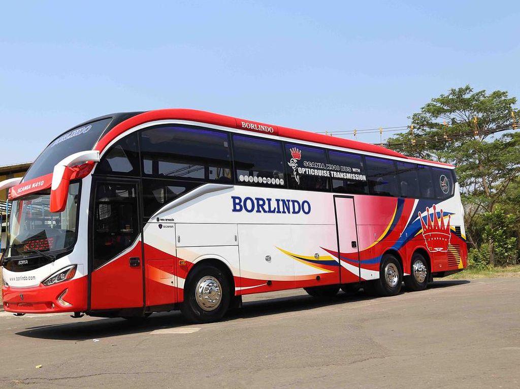 Bukan di Jawa, Sasis Bus Premium Lebih Dulu Populer di Sulawesi dan Sumatra