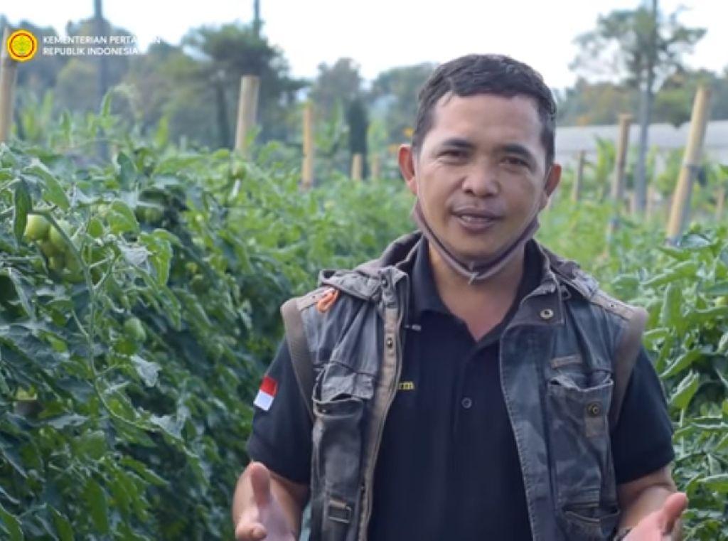 Hanya Lulusan SD, Petani Sayur Ini Sukses Raih Penghargaan Dunia