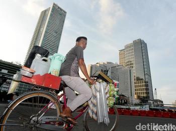 Balada Starling di Hiruk Pikuk Jakarta