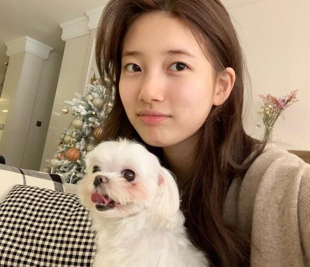 Bae Suzy tetap cantik meski bare face.