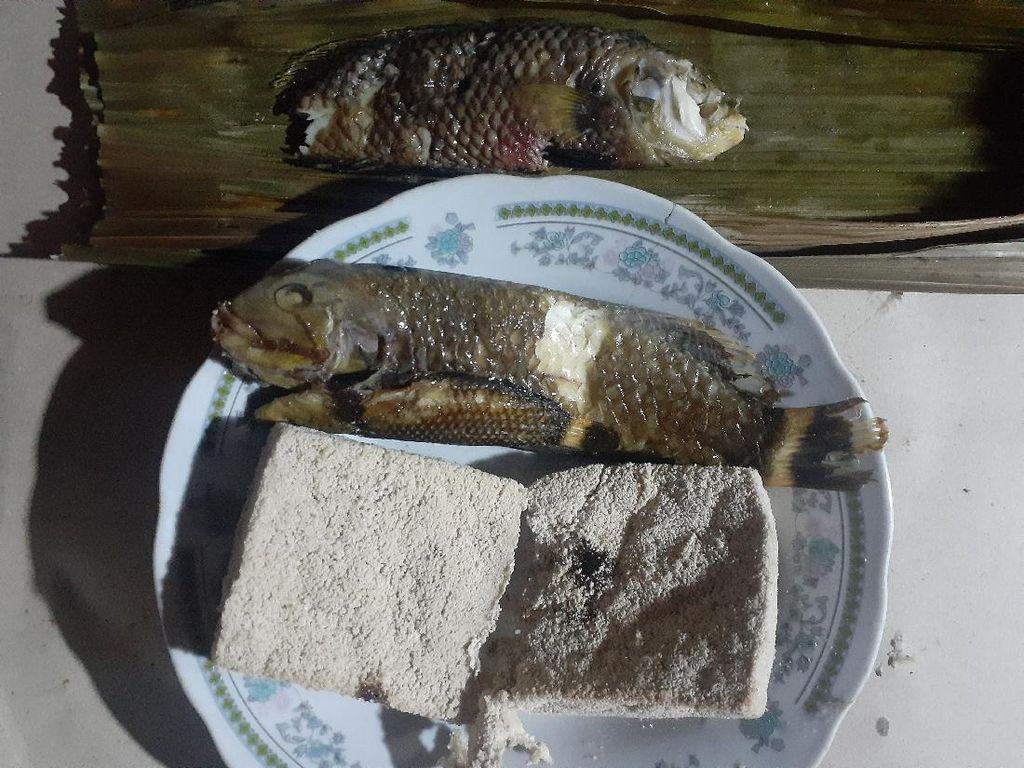 Ikan Unik dari Nabire: Suka Sembunyi di Pasir, Kepalanya Tajam
