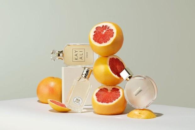 Foto: Fruity/freepik.com
