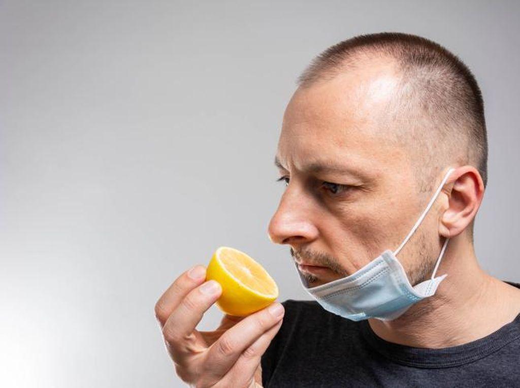 Cara Alami Mengembalikan Indra Penciuman dengan Konsumsi 5 Makanan Sehat Ini