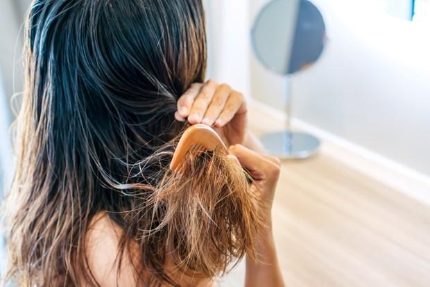 Rambut yang kehilangan minyak alami akan terasa kasar karena tidak dapat memproduksi kelembapan sendiri.