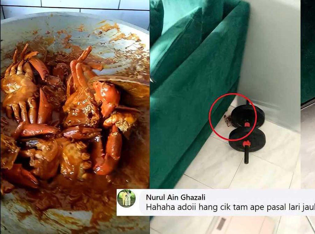 Duh! Kepiting Ini Masih Sempat Kabur dari Kuali Saat Akan Dimasak