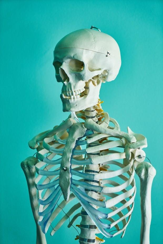 menguatkan tulang