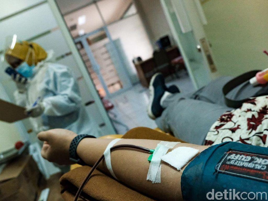Syarat Donor Plasma Konvalesen COVID-19, Lagi Banyak Banget yang Cari