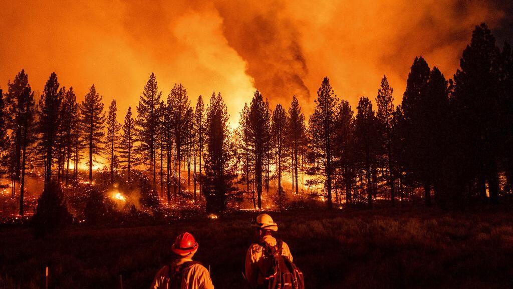 Merah Membara, Api Lumat Hutan di California