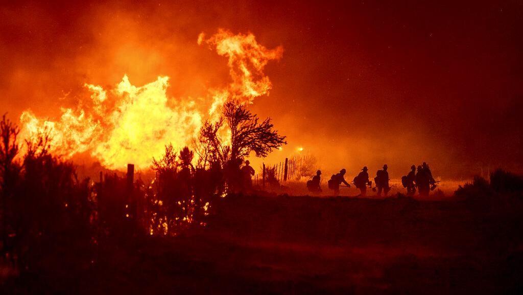 Kobaran Api yang Lalap Hutan di California Makin Membara