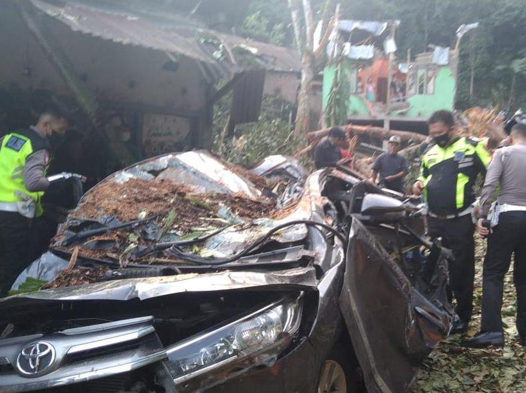 Pohon Tumbang saat Hujan di Bengkulu Timpa Mobil, 2 Orang Tewas