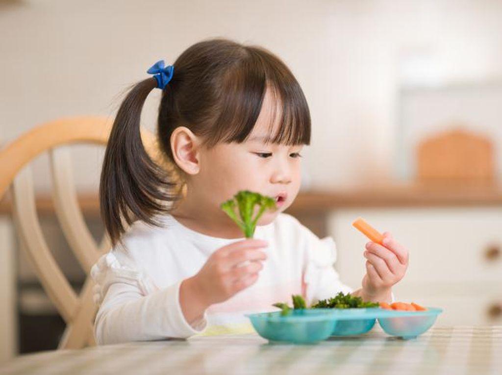 5 Nutisi Ini Bikin Otak Anak Makin Cerdas, Semua Ada di Makanan Lho