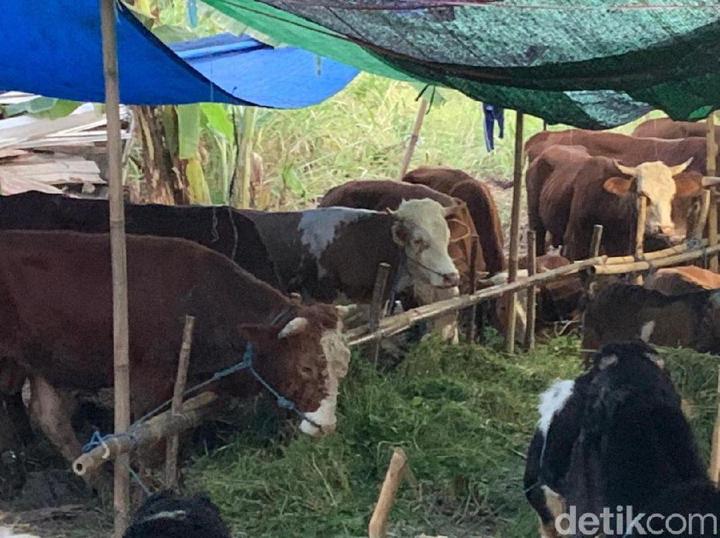 Polisi Usut Dugaan Ormas Bekingi Pedagang Kurban di Trotoar Jakpus