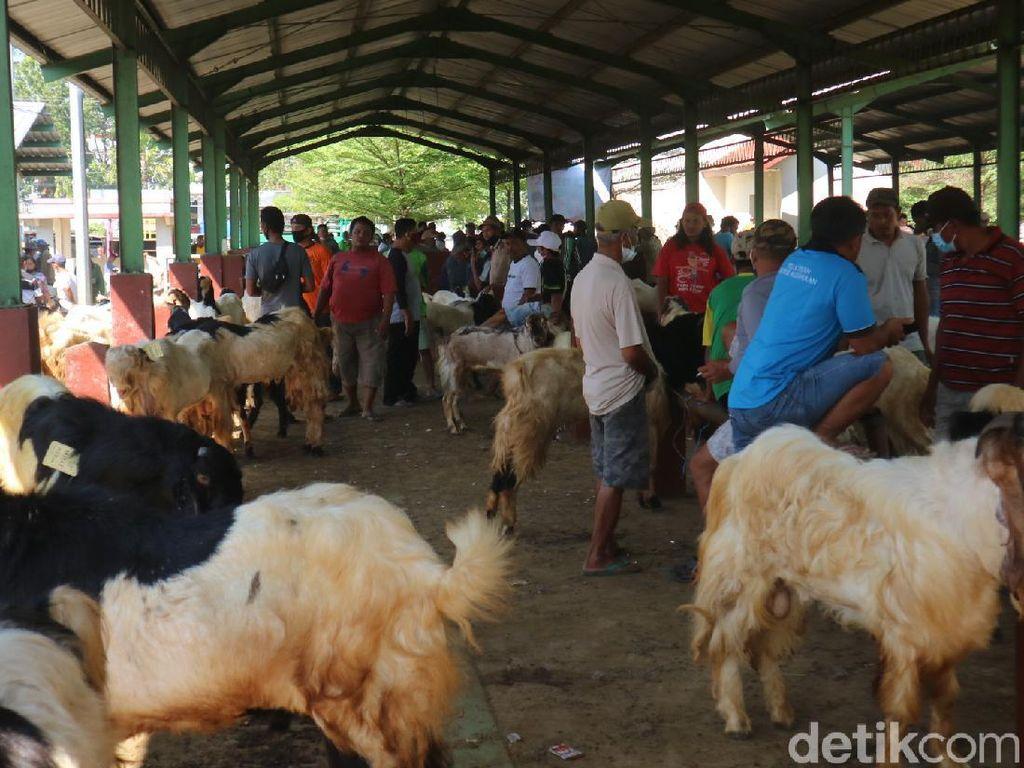 Penampakan Padatnya Pengunjung Pasar Hewan di Kudus Saat PPKM Darurat