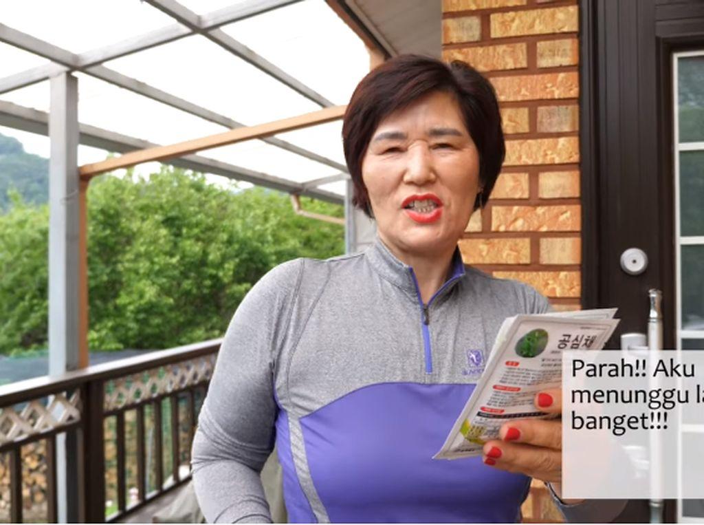 Emak-emak di Korea Ini Doyan Kangkung, Sampai Tanam dan Masak Sendiri