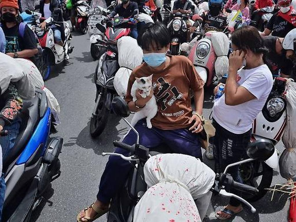 Warga Thailand Menyemut di Jalan Tolak Lockdown!