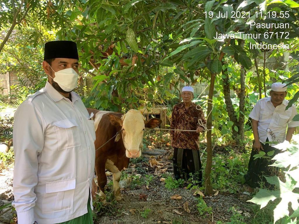 Momen Idul Adha, Kader Gerindra Jatim Sumbang 144 Hewan Kurban ke Masyarakat