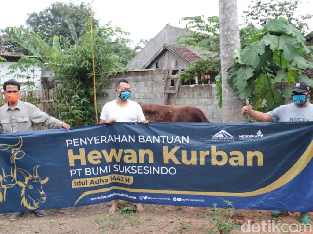 100 Hewan Kurban Dibagikan ke Warga Sekitar Tambang Emas Banyuwangi