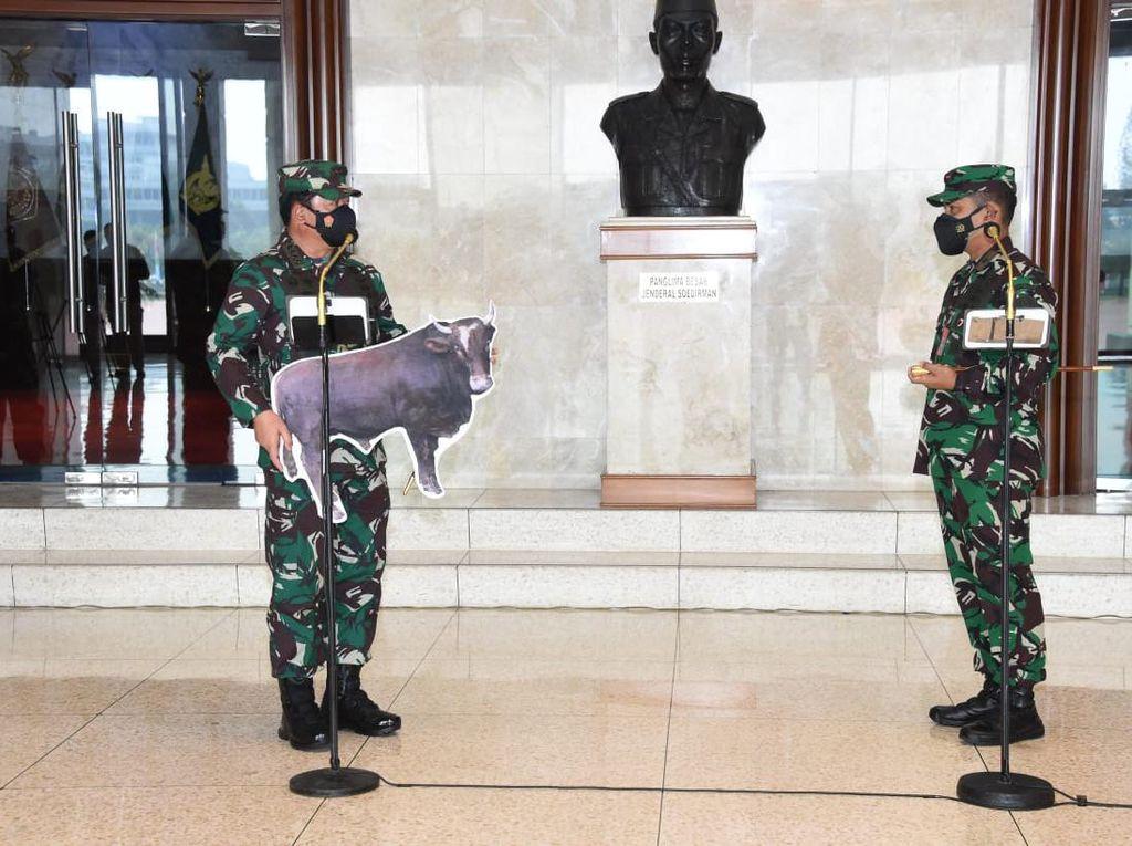 Panglima TNI Kurban 1 Sapi: Bagikan ke yang Berhak Menerima